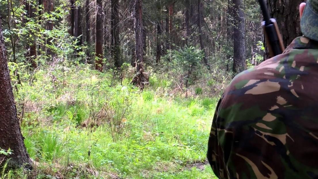 Выборгский охотник начал стрельбу по людям, спрятавшись в лесном массиве