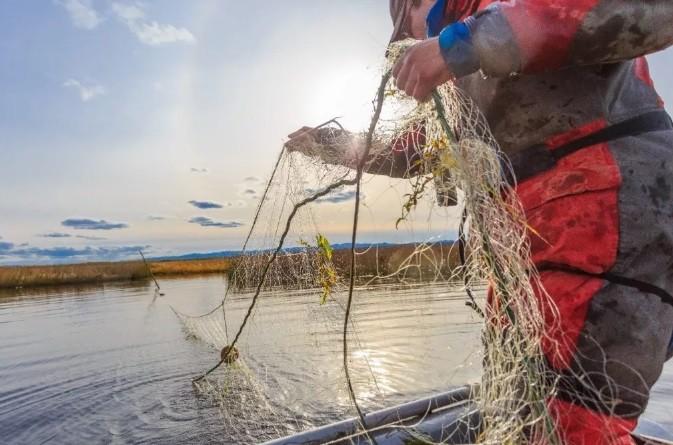 Задержаны три волгоградских браконьера с крупным уловом