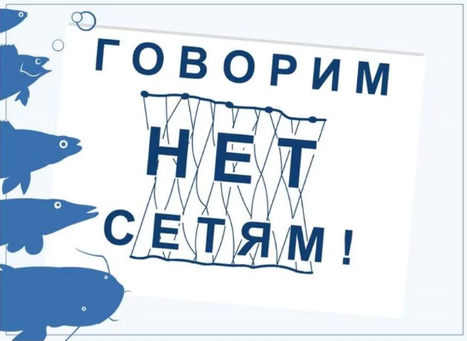 «День без сетей» спас 320 килограммов рыбы в Нижнем Новгороде