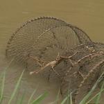Объявлена охота на браконьеров: водоема Ставрополя под наблюдением правоохранителей