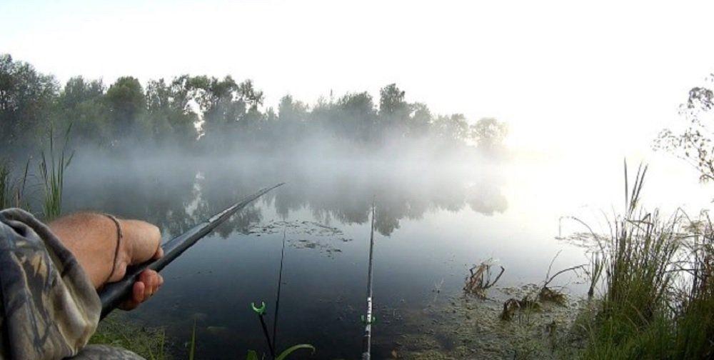 Рыбалка летом в августе
