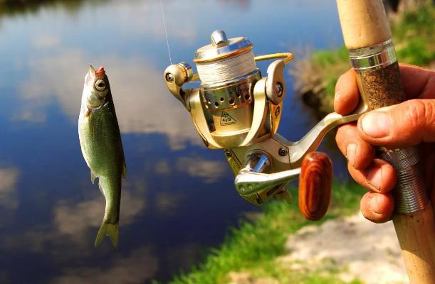 А вы знаете, сколько рыбе лет, которую вы поймали?