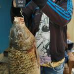 Астраханец поймал рыбу своей мечты