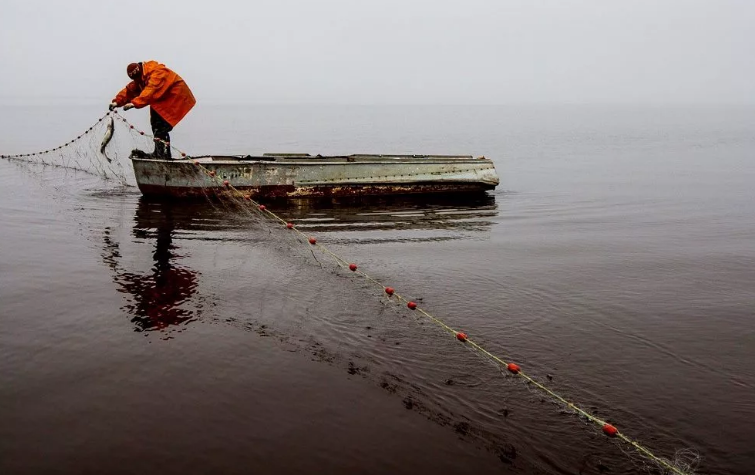 Два года в обмен за нерестящуюся рыбу