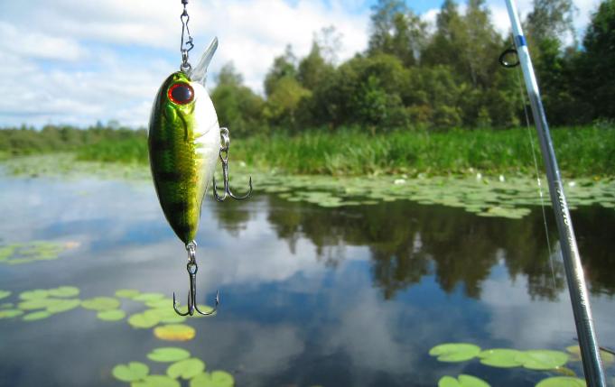 Из-за рыбалки рыбаку пришлось утопить своего товарища