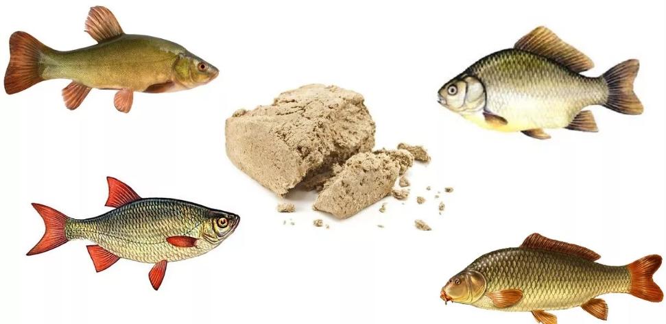 Ловим рыбу на халву: способы использования приманки