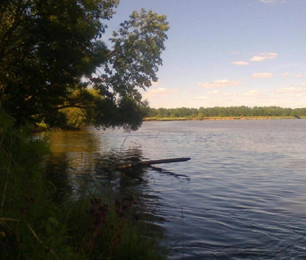 Ловля язя летом - где искать рыбу