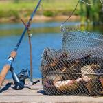 Все о тонкостях запрета рыбалки 2019 года