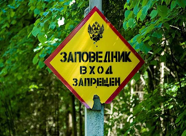 Браконьеры все чаще охотятся в охранных зонах