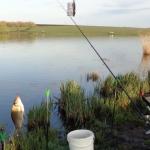 Кто виноват, что рыбалка неудачно закончилась, если не «соседа»