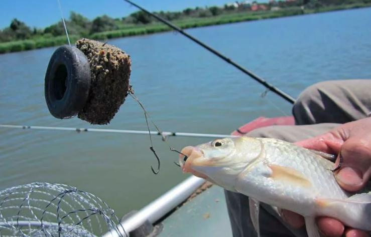 Ловим рыбу на макушатник