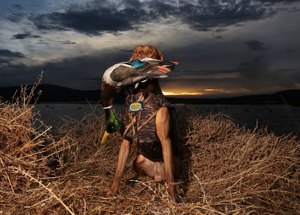 На охоту снова наложили запрет в Самарской области