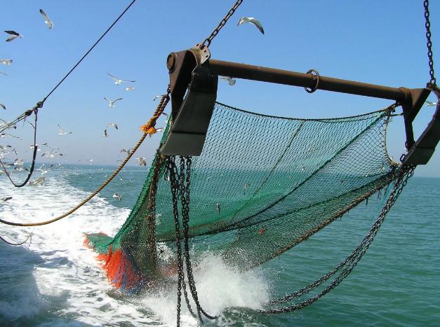 Полицейские задержали рыбака с сетями