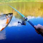 Просили бесплатную рыбалку у Путина, а получили наглых нелегалов!