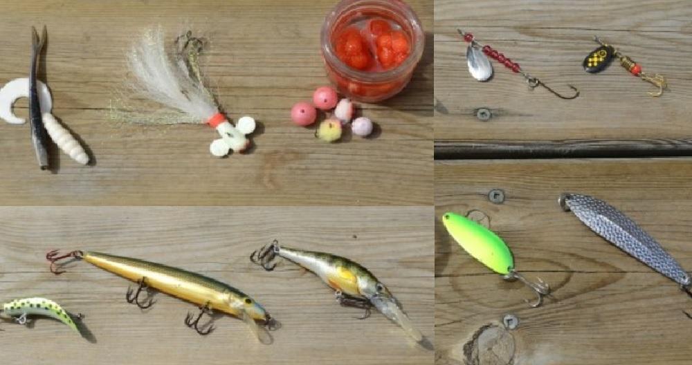 Снасти и способы ловли форели летом