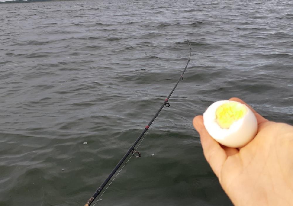 Советы бывалых о рыбалке на озере