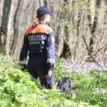 Спасатели вывели из леса очередного грибника
