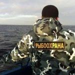100 тысяч штрафа получили питерские рыбаки
