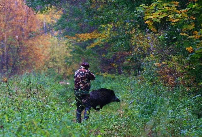 Начало охоты в нижегородской области