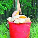 Грибник не постеснялся выйти в лес обнаженным