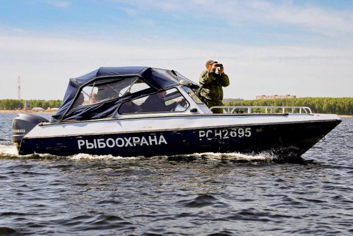 Рыбоохрана не смогла задержать преступников