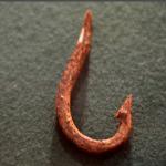 Ржавые крючки – это болезнь, с которой нужно бороться