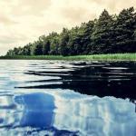 Семейная рыбалка на Белом озере
