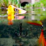 Поппер – лучшая снасть для Вашей рыбалки, но если пользоваться им умело