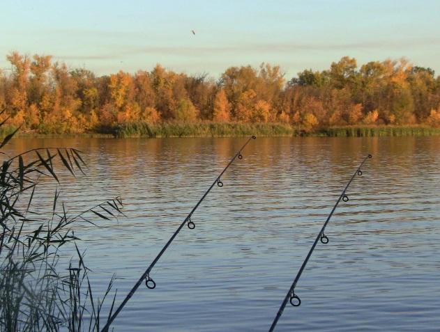 Зимовальные ямы – запрет на вылов рыбы уже действует