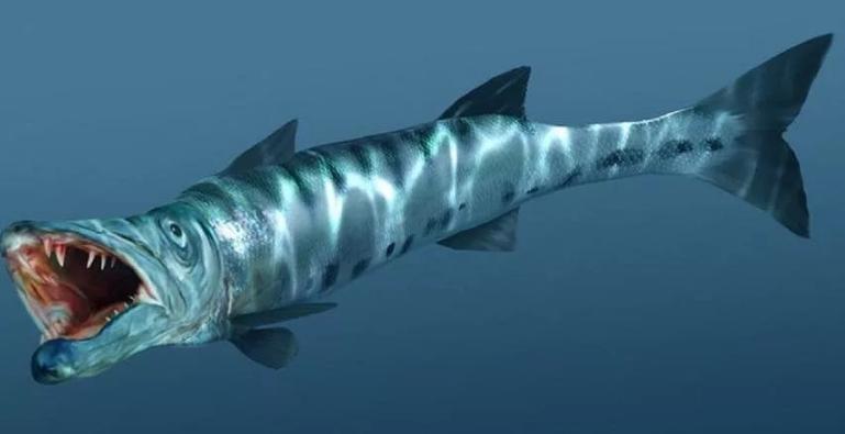 Самые опасные рыбы Мира