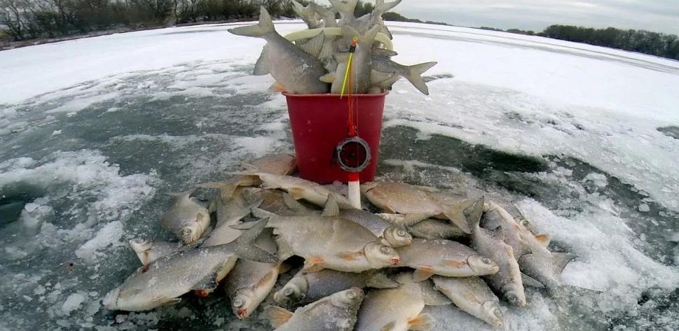 Рыбак из Омска чуть не уплыл на льдине