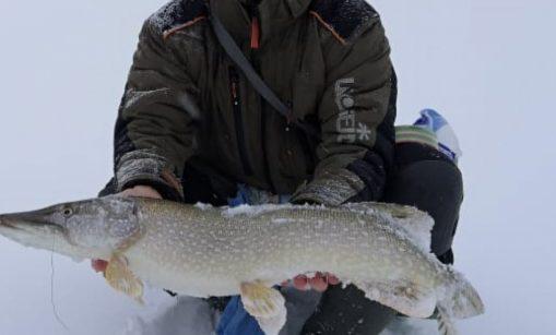 Что рыбаки Алтая наловили за эту неделю? Результаты Вас удивят