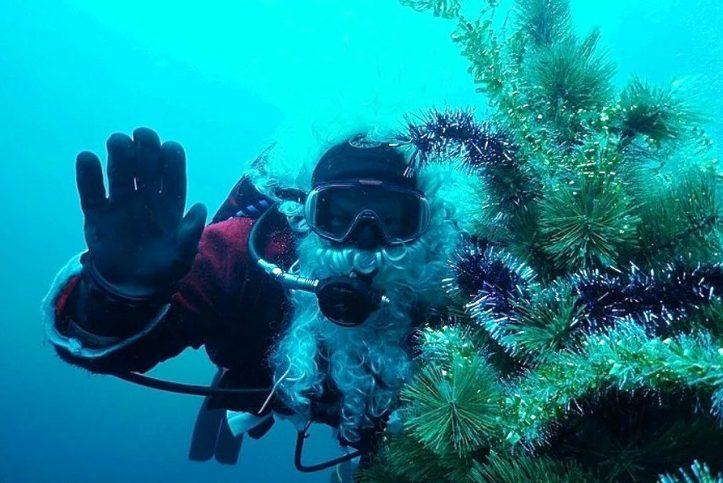 Дайверы из Мурманска установят подводную новогоднюю ель