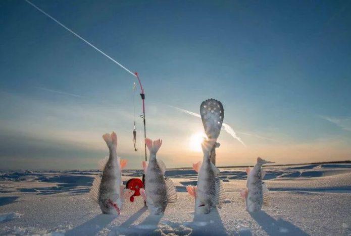 Идем на зимнюю рыбалку что стоит взять с собой