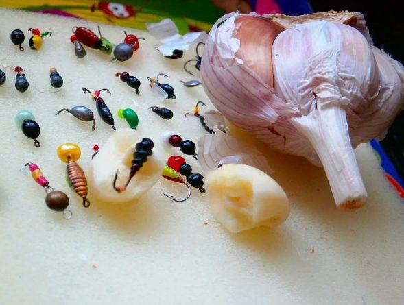 Проводим эксперимент мормышка и чеснок