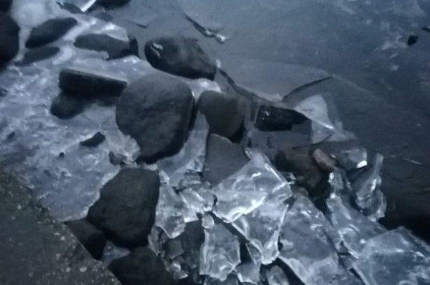 Рыбаки из Твери отказались от любимого хобби из-за наступившей оттепели