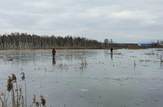 Тверские рыбаки – смельчаки ловят ротанов