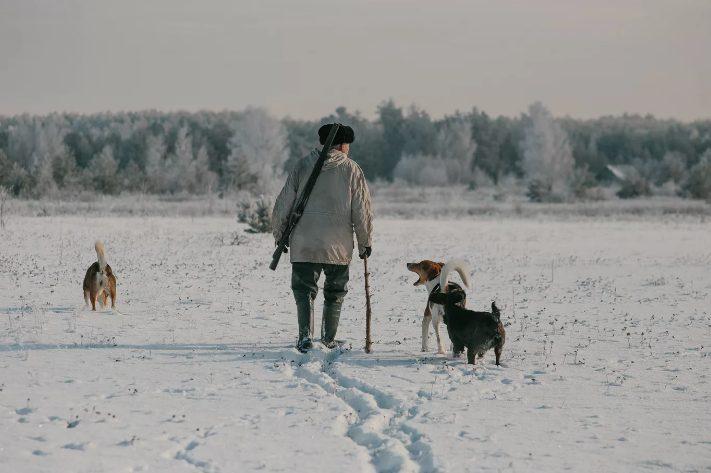 Браконьеры так спешили скрыться от погони, что забыли свою собаку и машину
