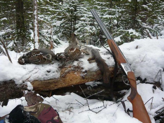 Охотник застрелил своего приятеля, приняв его за преследуемую цель