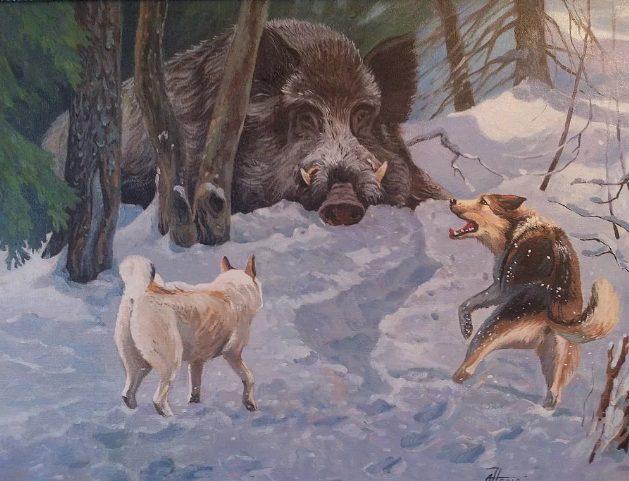 Охоту на кабана на Руси начинали только с 12 декабря