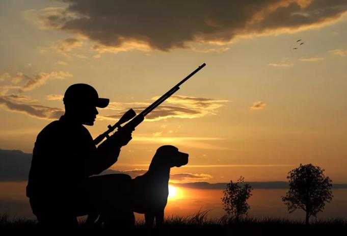 И снова браконьеры не страшатся закона и его последствий