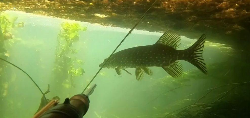 Рыбак – подводник погиб во время рыбалки нов Подмосковье