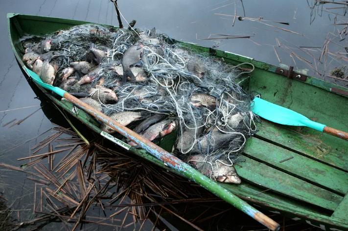 Браконьер причинил ущерба природе на 220 000 рублей