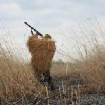 Охота в Пскове может быть перенесена. Решение за охотниками