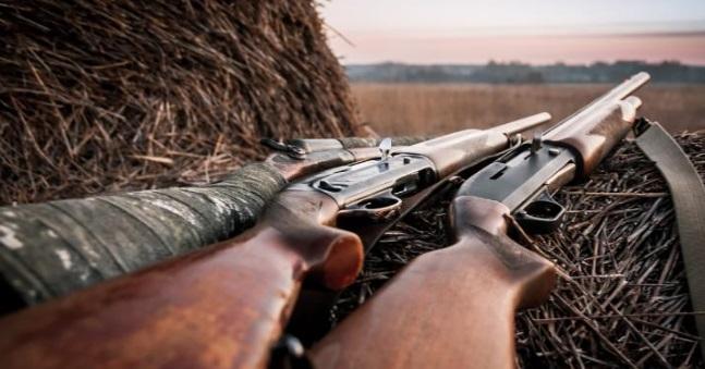 Охота в псковских угодьях будет разрешена, несмотря на вирус