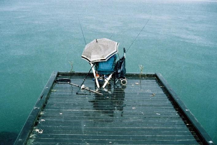 Почему в дождь рыба клюет активнее