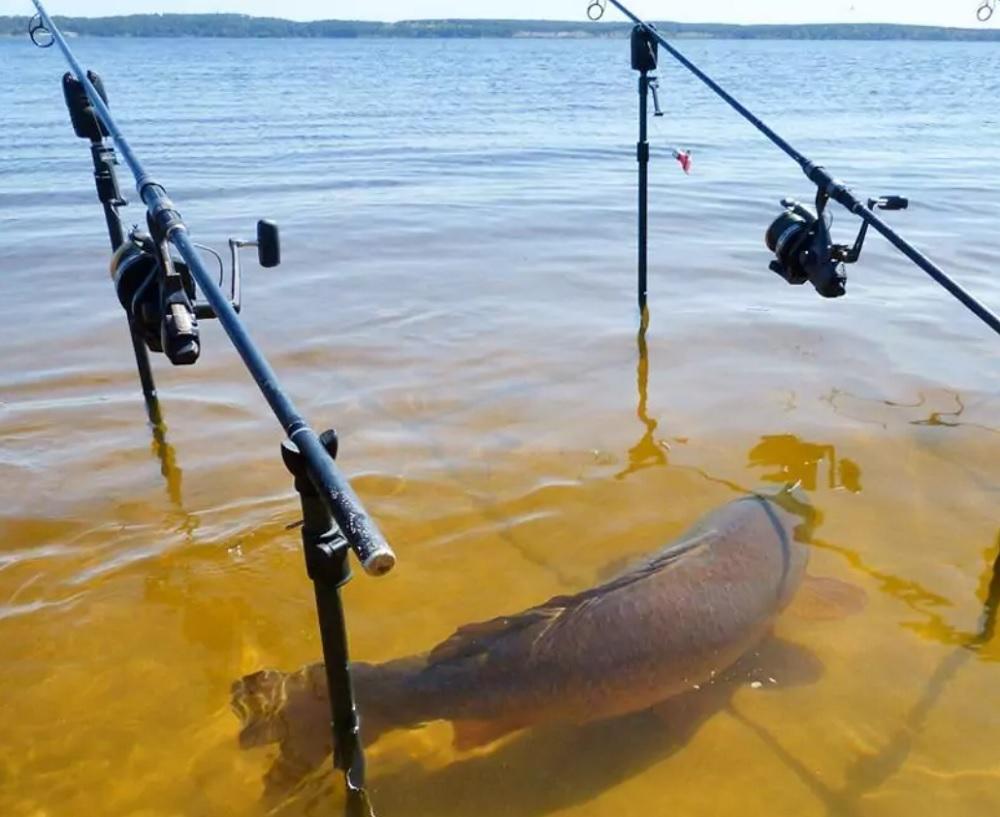 Рыбалка в России - особенности национальной рыбалки