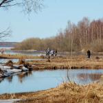 Рыбалка в регионе ограничена в связи с нерестом