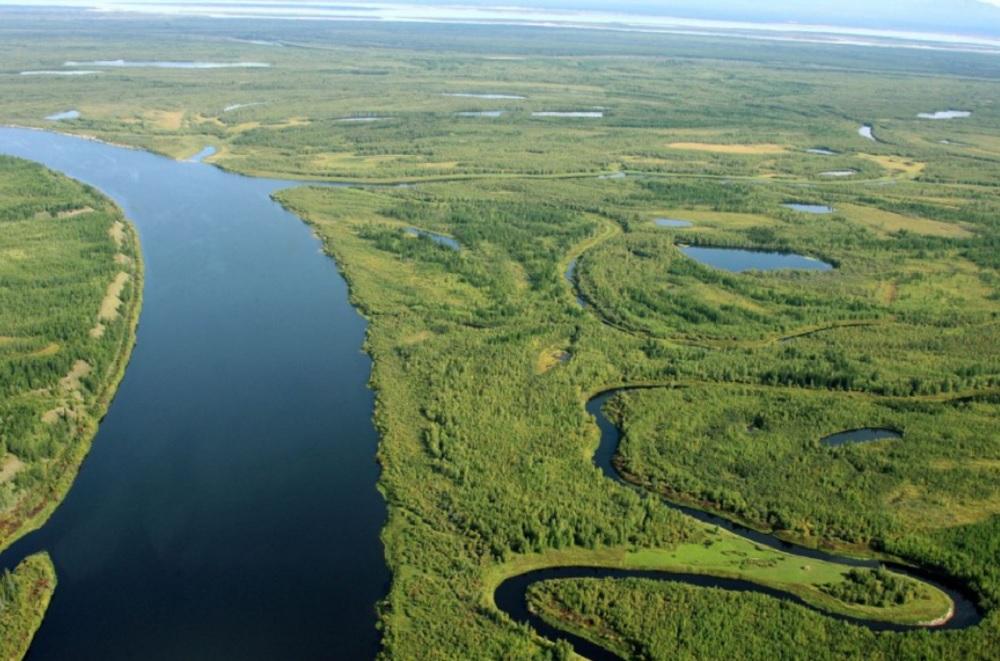 Самые рыбные реки России
