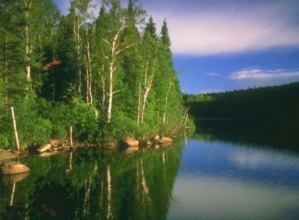 В Саратове погиб 54-летний рыболов